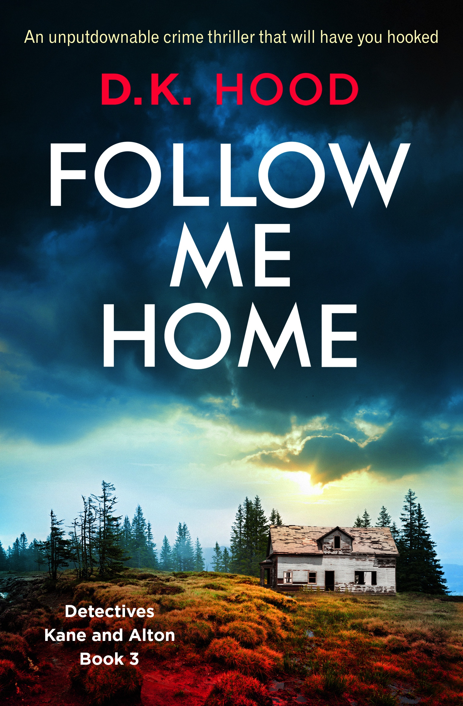 blogtour bookreview follow me home by dk hood bookouture dkhood thriller if only i could. Black Bedroom Furniture Sets. Home Design Ideas